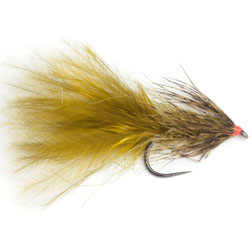 Bassano Index Fly