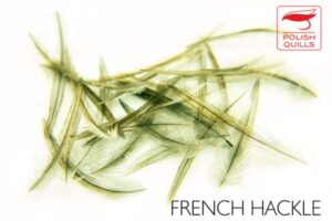 Polish Quills French Hackle 100 Selected Feathers