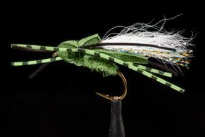 manic Flat Back Cicada Olive fly