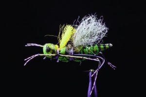 Manic KK Henneberry Hopper Green fly